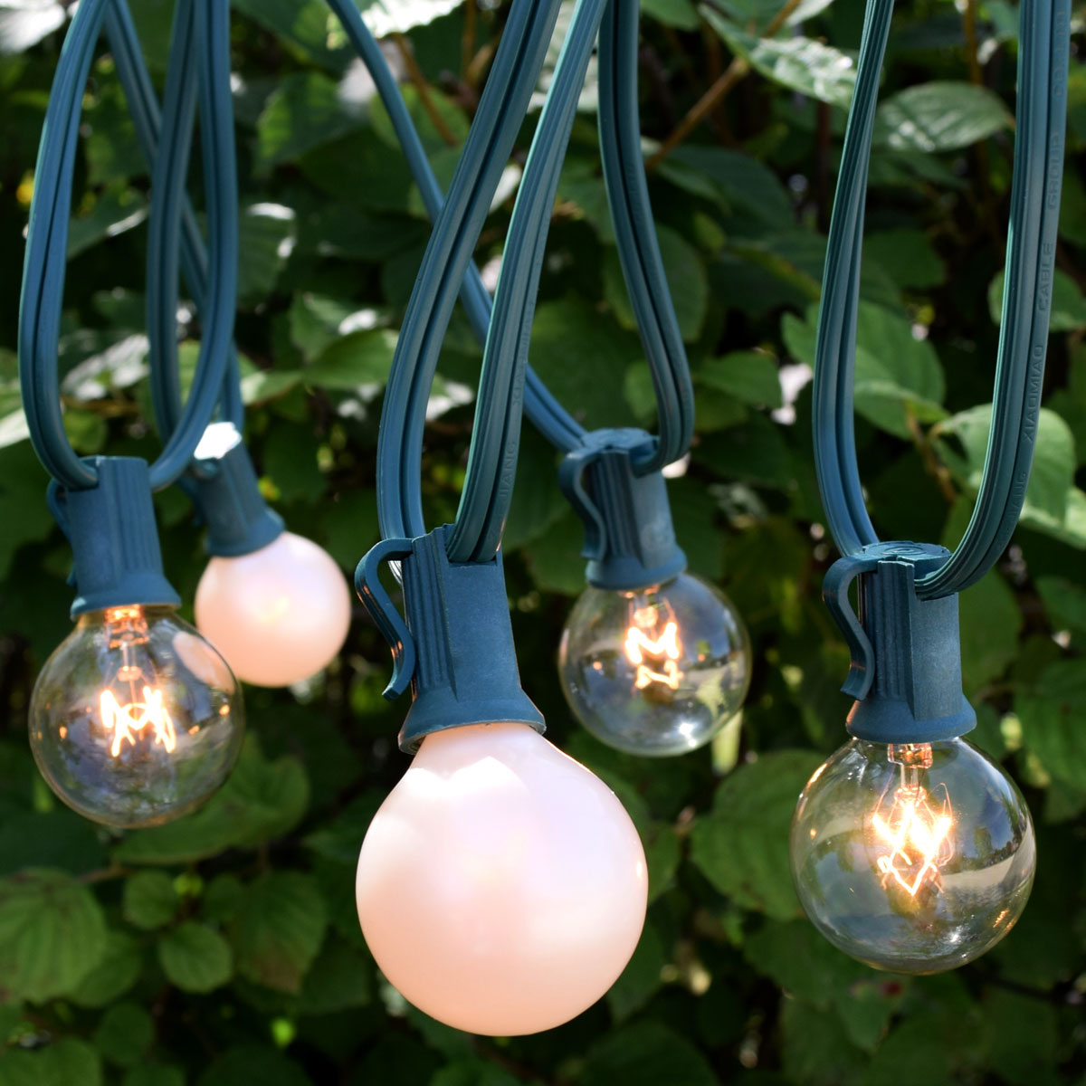 C7 clear white globe string light kit