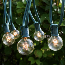 25' Clear Commercial Grade Globe String Lights