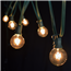Clear Globe String Lights