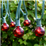 25' Red Globe String Lights