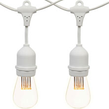 White LED Commercial String Lights