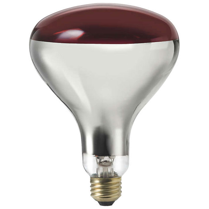 Red R40 Heat Light Bulb - 250W 501790