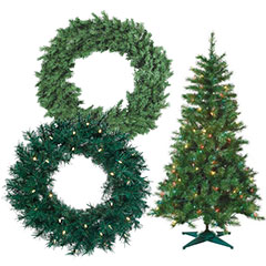 Holiday Trees & Wreaths