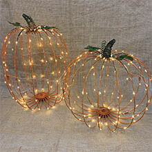 Harvest Pumpkin Set with Lights GC2486390
