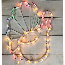 Turkey Party String Lights : Thanksgiving Party String Lights