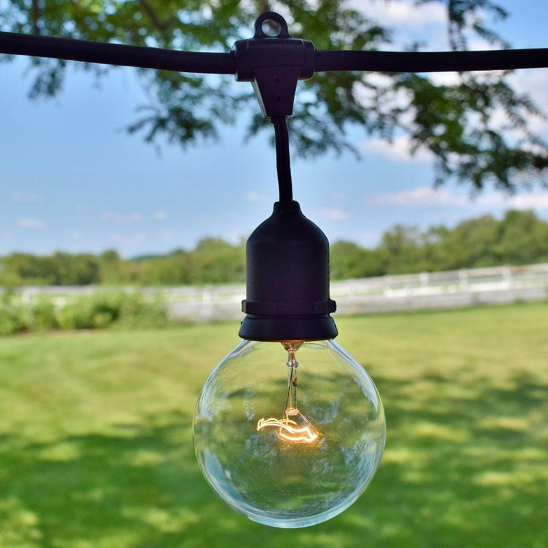48 Commercial Clear Globe String Light Kit Black Suspended