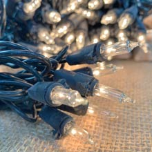 100 ft. Clear String Lights - Black Wire BS-74100