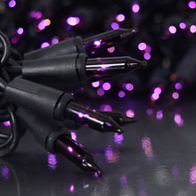 100 Count Purple Miniature Light Set - Black Wire