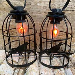 Caged Crow Party String Lights DR-30054638