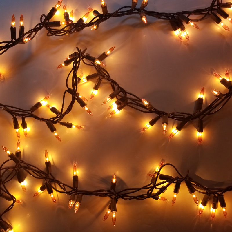 Home for Harvest Garland Lights DR-3112852