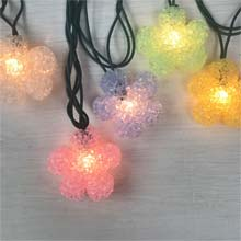 Spring Flower Party String Lights