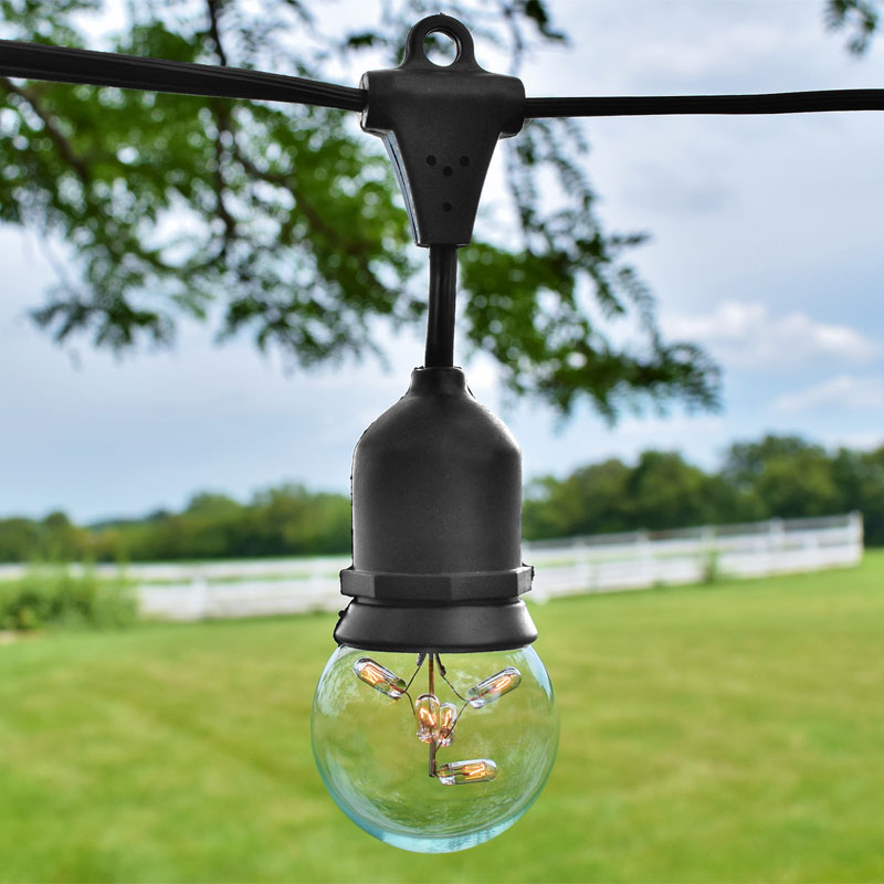 Commercial Globe String Lights - 2 Inch G16 Bulbs - Black Strand - Medium Base