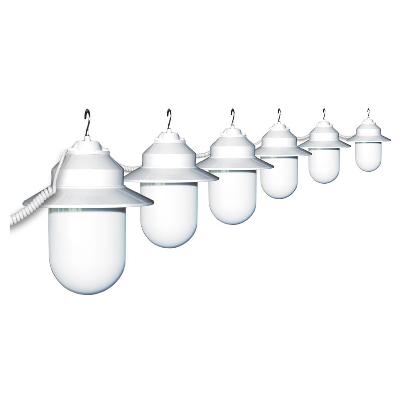 White Savannah 6 Globe String Light Set